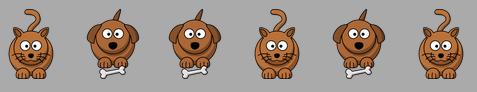 Commande de croquettes chiens et chats